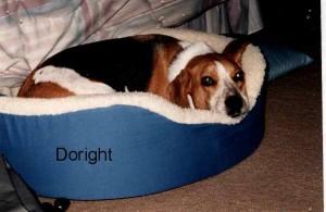 Doright