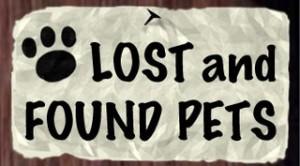 lostandfound